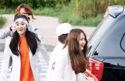 Watch The Ark GIF on Gfycat. Discover more but look at the precious, gifs, minju was still in the car lol, ot5, the ark GIFs on Gfycat