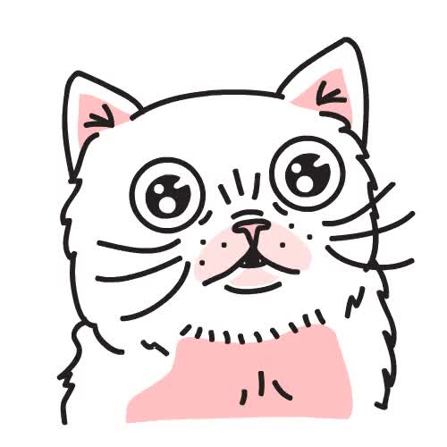 Watch and share Kitty GIFs on Gfycat