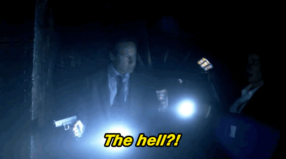 xfiles thehell GIFs