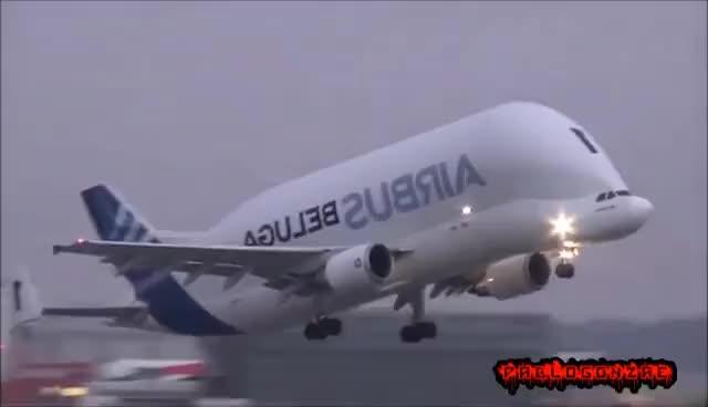 Watch and share 10 Aviones En Los Que Me Daría Vergüenza Volar GIFs on Gfycat
