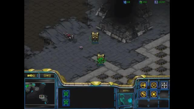 Watch and share Broodwar GIFs on Gfycat