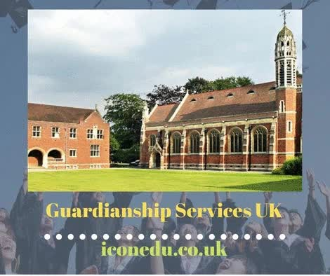 Watch and share Guardianship Services UK GIFs by ICON Education  on Gfycat