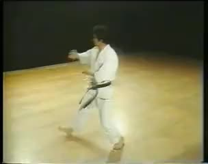 Watch and share Heian Nidan - Shotokan Karate GIFs on Gfycat