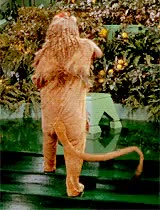 Watch i'm dreaming the hardest GIF on Gfycat. Discover more *judy, costumes, filmedit, judy garland, mine, my gifs, the wizard of oz GIFs on Gfycat