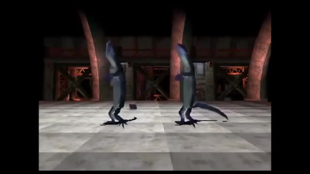 Watch Lit Lizards HD GIF on Gfycat. Discover more lit lizards, lizard, vine GIFs on Gfycat