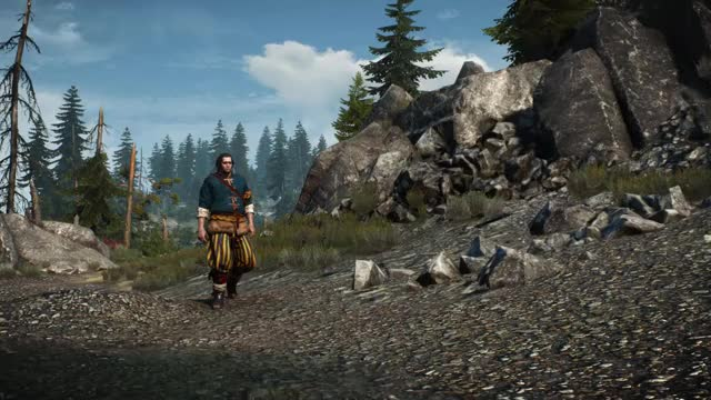 Watch and share Witcher GIFs and Skjall GIFs by BothFawn on Gfycat