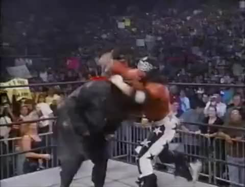 Watch and share Sting GIFs on Gfycat