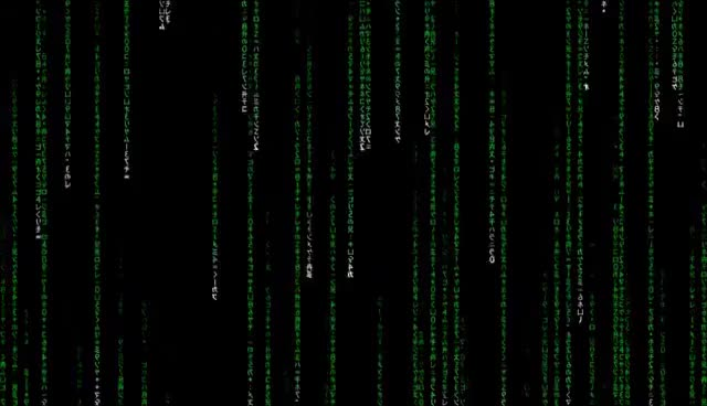 Watch and share Matrix Rain GIFs on Gfycat