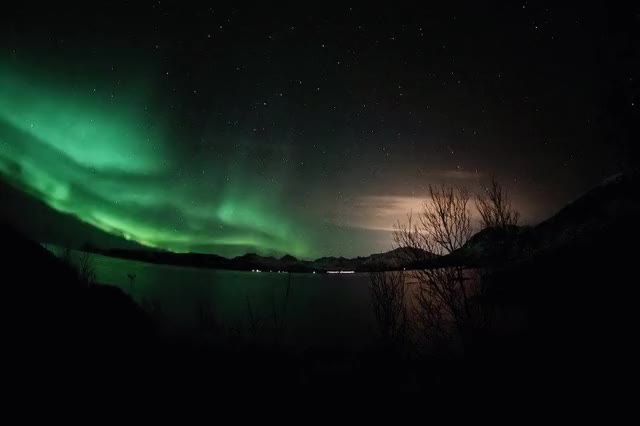 Watch Sommaroy, Northern lights GIF on Gfycat. Discover more related GIFs on Gfycat