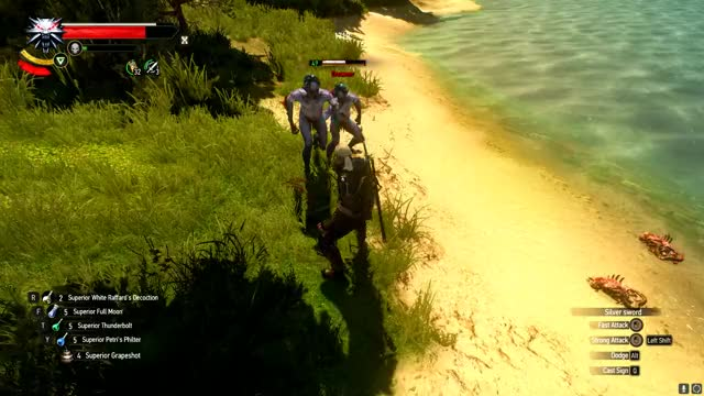 Watch and share Thewitcher3 GIFs by besterich27 on Gfycat