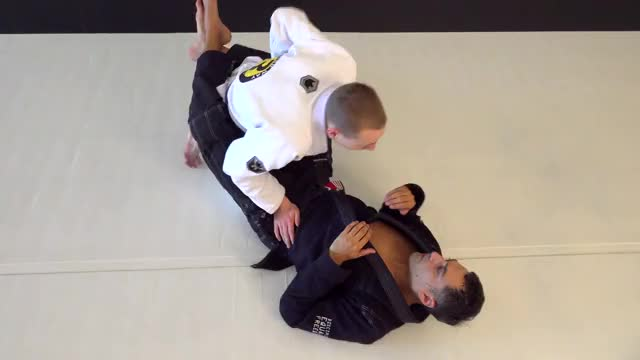 Watch Guard Pass Counter GIF on Gfycat. Discover more Back Attacks, Chokes from Guard, Guard Passing, Leg Locks, Movements, Sidemount Escapes, Sweeps, Takedowns, Top Position, Ukemi GIFs on Gfycat