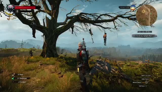 Watch and share Gamephysics GIFs and Witcher GIFs on Gfycat