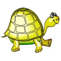 Watch and share Tortoise animated stickers on Gfycat