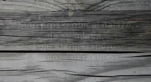 Watch Pred sator (sinhronizacija) GIF on Gfycat. Discover more Predator, ator, pred, predsator, sinhronizacija, smesno GIFs on Gfycat