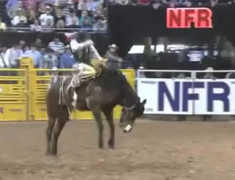 Watch and share Top 25 NFR Saddle Bronc Rides (2001-2012) GIFs on Gfycat
