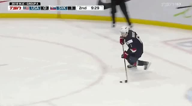 Watch and share Slovakia GIFs and Hockey GIFs on Gfycat