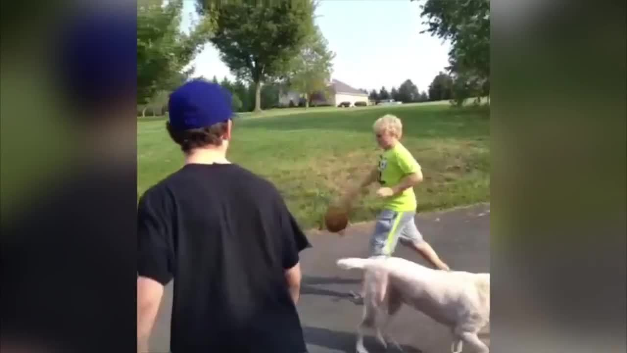 OutOfTheLoop, outoftheloop, Where does the basketball actually go in this vine? Is it photoshopped out or something? (reddit) GIFs