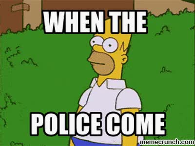 Watch Generate a meme using Homer Simpson Bush GIF on Gfycat. Discover more related GIFs on Gfycat