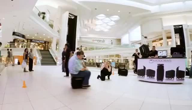 Watch and share Ride Your Suitcase! ~ World's First Motorized Carry-On Bag ~ MODOBAG GIFs on Gfycat