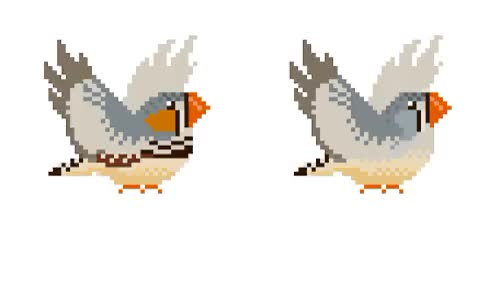 Watch and share Pixel Animation GIFs and Zebra Finches GIFs on Gfycat
