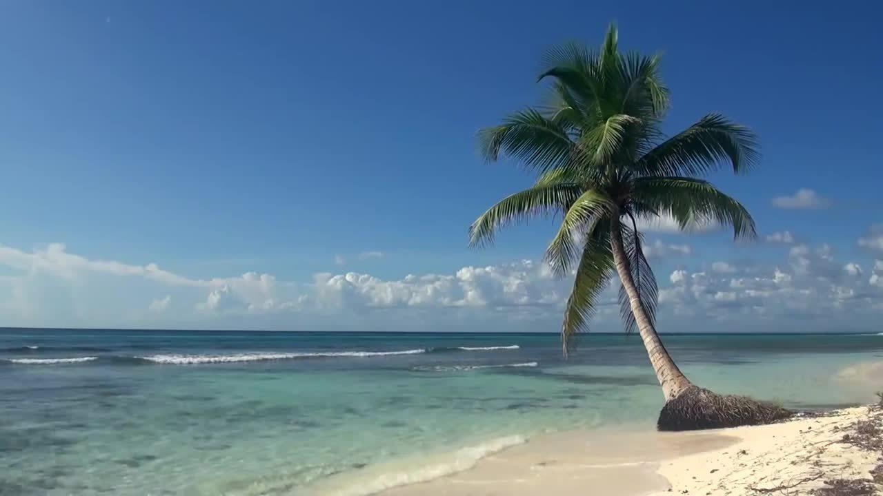 NatureGifs, naturegifs, Quiet beach in Trinidad and Tabago (reddit) GIFs