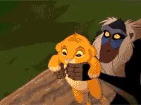 Watch lion king, funny, lion, king, fail GIF on Gfycat. Discover more related GIFs on Gfycat