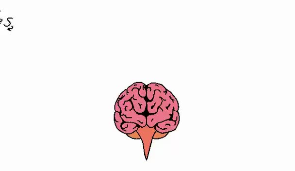 Watch and share Cerebro Amor GIFs on Gfycat
