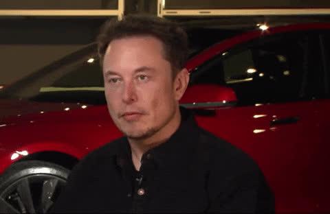 Derp, Elon, ElonMusk, HurrDeDurr, Musk, Muskie, Tesla, Elon HurrDeDurr GIFs