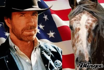 Watch and share Page 2 For Chuck Norris GIFs on Gfycat