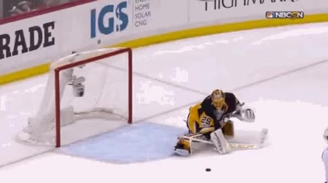 Watch and share Fleury GIFs and Hockey GIFs by Hokej a vše kolem něj on Gfycat