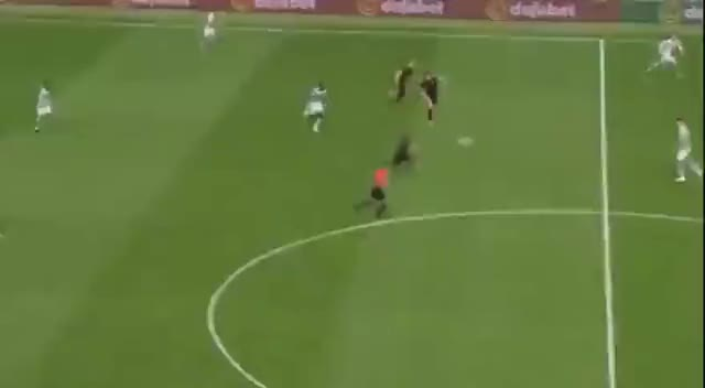 Watch Tom Rogic GIF by @notorious09 on Gfycat. Discover more related GIFs on Gfycat
