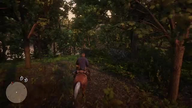 Watch Phen0meenal RedDeadRedemption2 20181102 01-44-31 GIF on Gfycat. Discover more related GIFs on Gfycat
