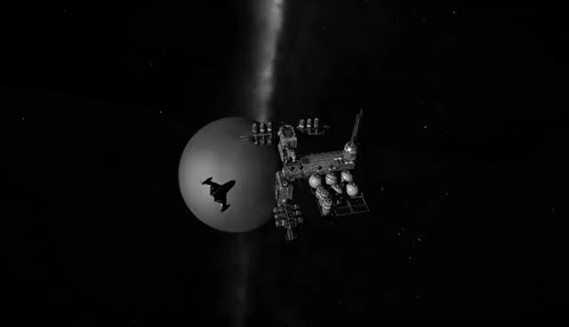 Watch Asp Explorer GIF on Gfycat. Discover more related GIFs on Gfycat