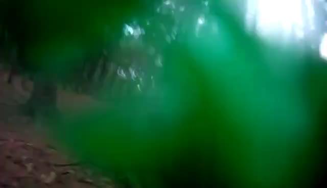 ball, hit, paintball GIFs
