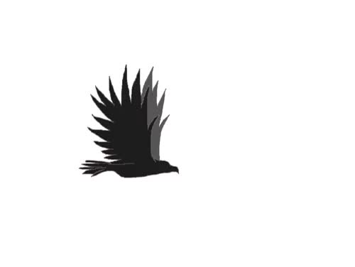 Watch and share Eagle Flying Simple Animation By FoReal100 GIFs on Gfycat
