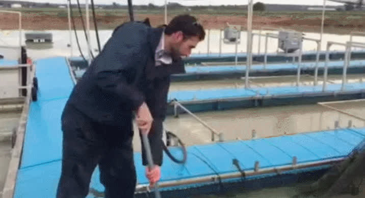 4x4, BUcket of fish GIFs
