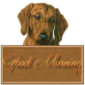 Watch and share Good Morning V animated stickers on Gfycat