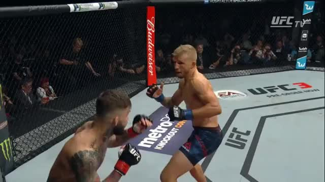 Watch Cody knocks down TJ at the end of the 1st GIF by wildmatt on Gfycat. Discover more Fighting, Knockdown, MMA, Punch, UFC, UFC217 GIFs on Gfycat