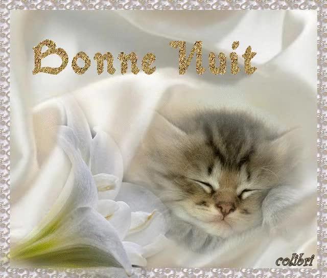 Watch and share GIFS BONNE NUIT.. BONSOIR.. SOIRÉE GIFs on Gfycat