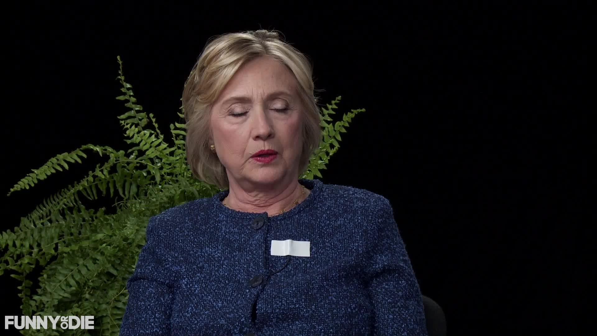 between two ferns, between2ferns, betweentwoferns, fod, funny or die, hillary clinton, hillaryclinton, zach galifianakis, Hillary Clinton - Okay - Between Two Ferns with Hillary Clinton GIFs