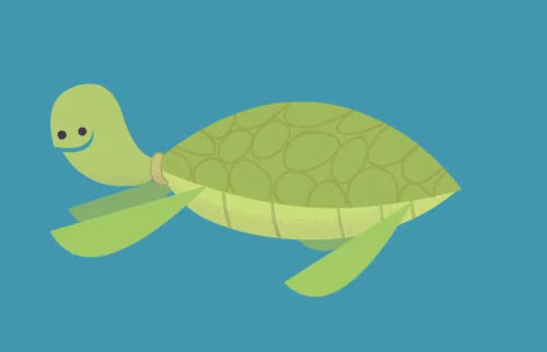 Watch this turtle GIF on Gfycat. Discover more related GIFs on Gfycat