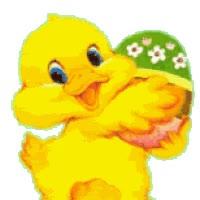 Watch and share Kuiken Met Ei animated stickers on Gfycat