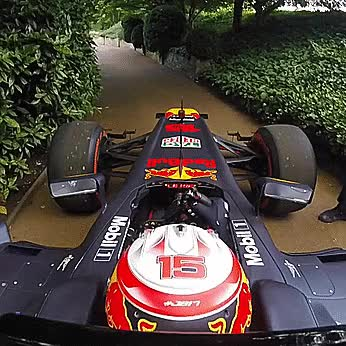 Watch Formula 1 driver at the Grand Prix Ball GIF on Gfycat. Discover more related GIFs on Gfycat