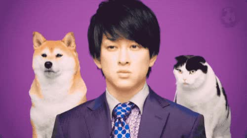 Watch and share Yu Yokoyama GIFs and Celebs GIFs by chikaya.takahashi on Gfycat