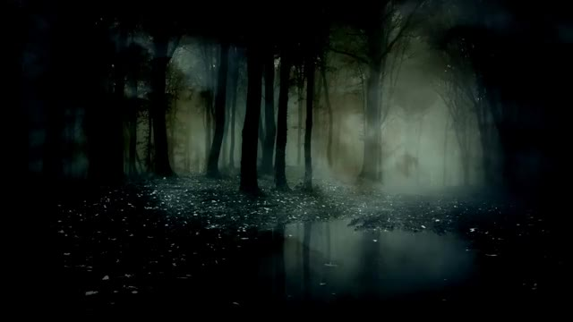 Watch Ambient Scary Background Loop | SFINX 2016 GIF on Gfycat. Discover more Scary, Wood, Woods, ambient, background, creepy, dark, forrest, frightening GIFs on Gfycat