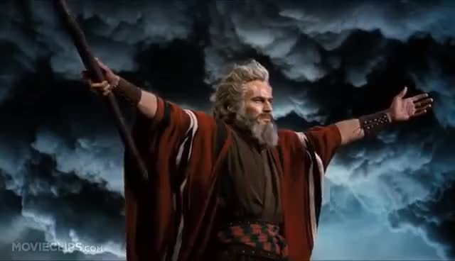 Watch and share Moses GIFs on Gfycat