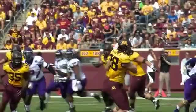 Watch and share Maxx Williams GIFs and Minnesota GIFs on Gfycat