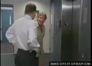 Watch and share Steve Irwin GIFs by PM_ME_STEAM_K3YS on Gfycat