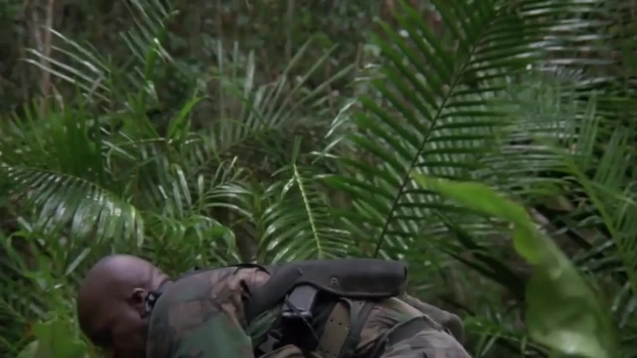 arnold schwarzenegger, celebs, Predator Jungle Scene GIFs