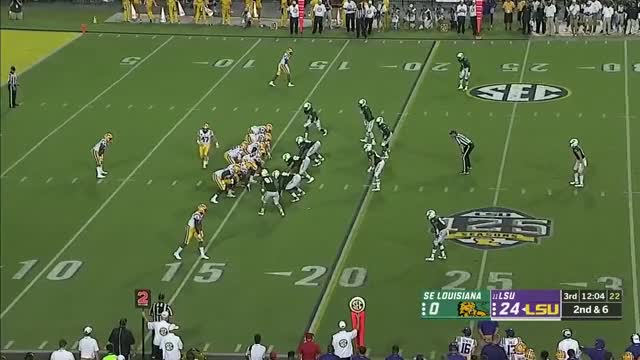 Watch and share Lsu Tigers Football GIFs and Brayden S GIFs on Gfycat